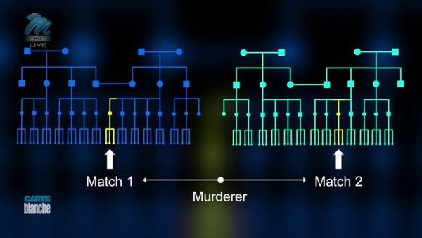 [IMAGE] Graphic depicting two family trees — one for each of the subject's genetic matches